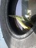 2013-04-04_10.11.27_tire