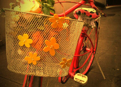 Foto do design Flor de Bicicleta
