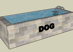 Foto do design Pet Pool Tigela