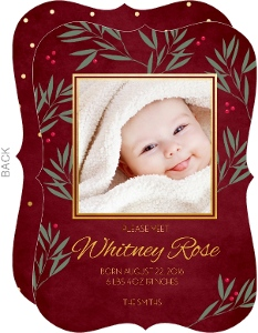 Berries And Leaves Holiday Birth Announcement