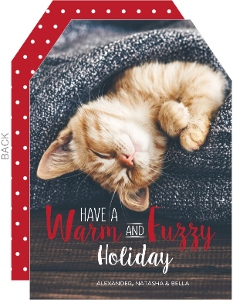 Warm and Fuzzy Pet Holiday Card