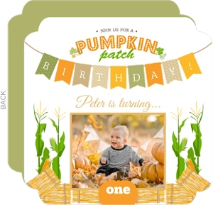 Fun Pumpkin Patch First Birthday Photo Invitation