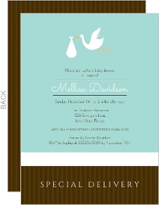 Special Delivery Baby Shower Invitation