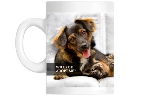 Color Block Animal Shelter Coffee Mug