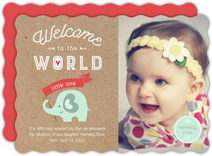 Elephant Little One Adoption Announcement