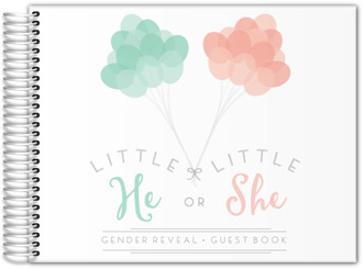 Mint & Peach Balloons Gender Reveal Baby Shower Guest Book