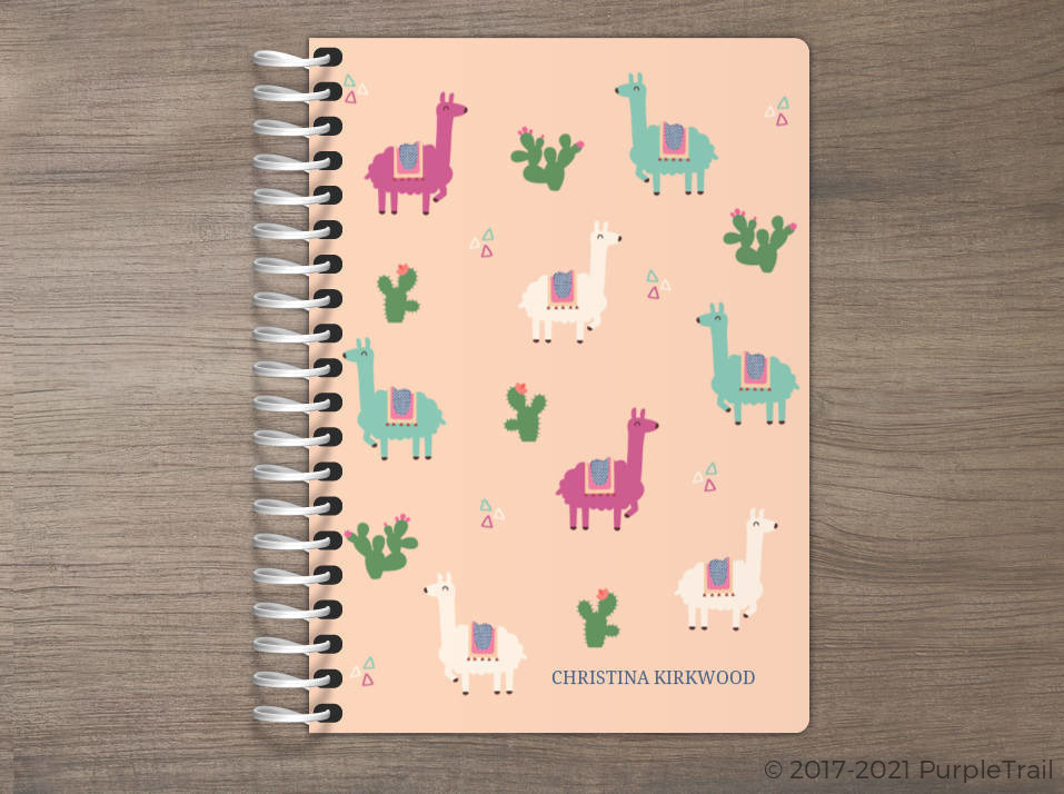 Llama and Cactus Tiny Planner