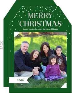 Simple Merry Silver Foil Christmas Photo Card