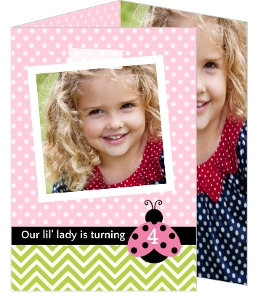 Pink And Green Pattern Ladybug Birthday Invitation