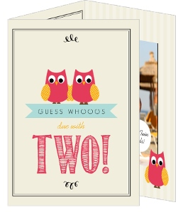 Whimsical Pink And Cream Owl Twins Baby Shower Invitation
