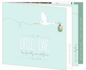 Mint Stork Booklet Adoption Announcement