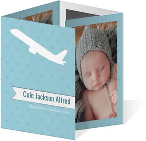Blue Airplane Adoption Announcements