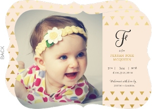 Bundle of Joy Name Plate Girl Baby Announcement