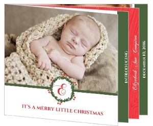 Red and Green Holly Christmas Birth Announcement