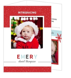 Red Snowflake Infographic Christmas Birth Announcement