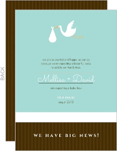 Blue And Brown Stork Pregnancy Announcement Card