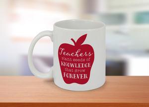 Teachers Knowledge Custom Mug