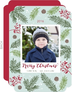 Festive Pine Needle Frame Christmas Photo Card