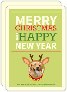 Family Pet Christmas Photo Card