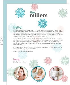 Winter Snowflakes  Christmas Letter