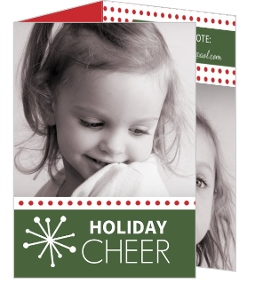 Retro Snowflake Trifold Holiday Photo Card