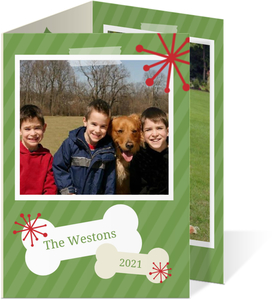 Green and Red Snowflake Pet Holiday Card