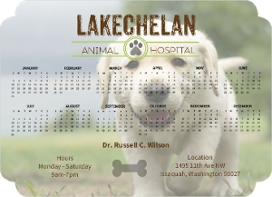 Animal Hospital Business Magnet Calendar