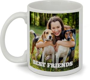Best Friends Photo Mug