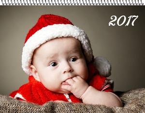 Baby's First Photos Calendar