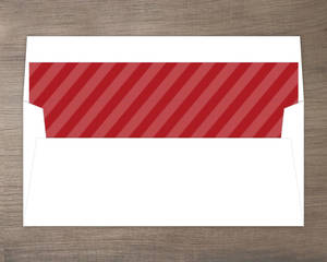 Red Family Holiday Stripe Liner