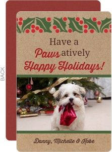 Pawsatively Happy Holidays Pet Photo Holiday Card