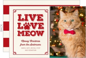 Live Love Meow Cat Christmas Photo Card