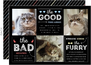 Good, Bad & Furry Cat Christmas Photo Card