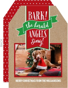Bark The Herald Dog Christmas Photo Card