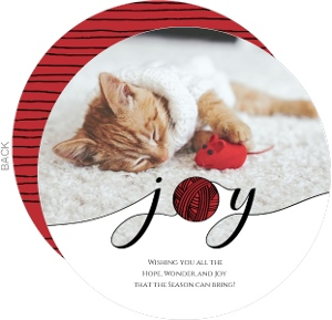 Red Joy Yarn Cat Holiday Card