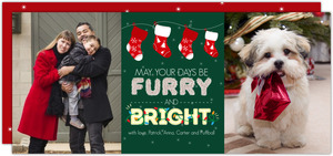 Family Christmas Stockings Pet Holiday Photo Card