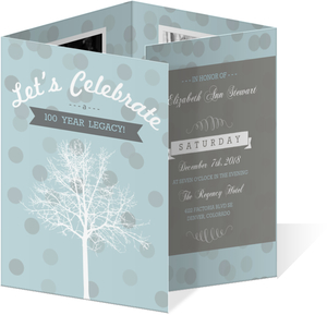 Wintery Modern 100Th Birthday Invitation