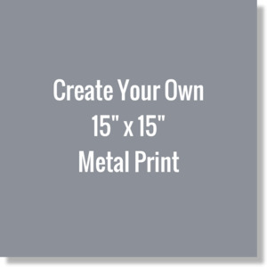 Create Your Own 15x15 Metal Print