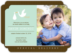 Brown and Green Stork Adoption Announcement