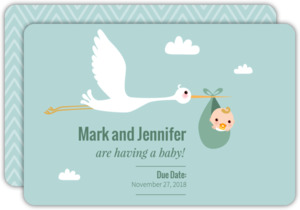 Special Delivery Stork Pregnancy Announcement