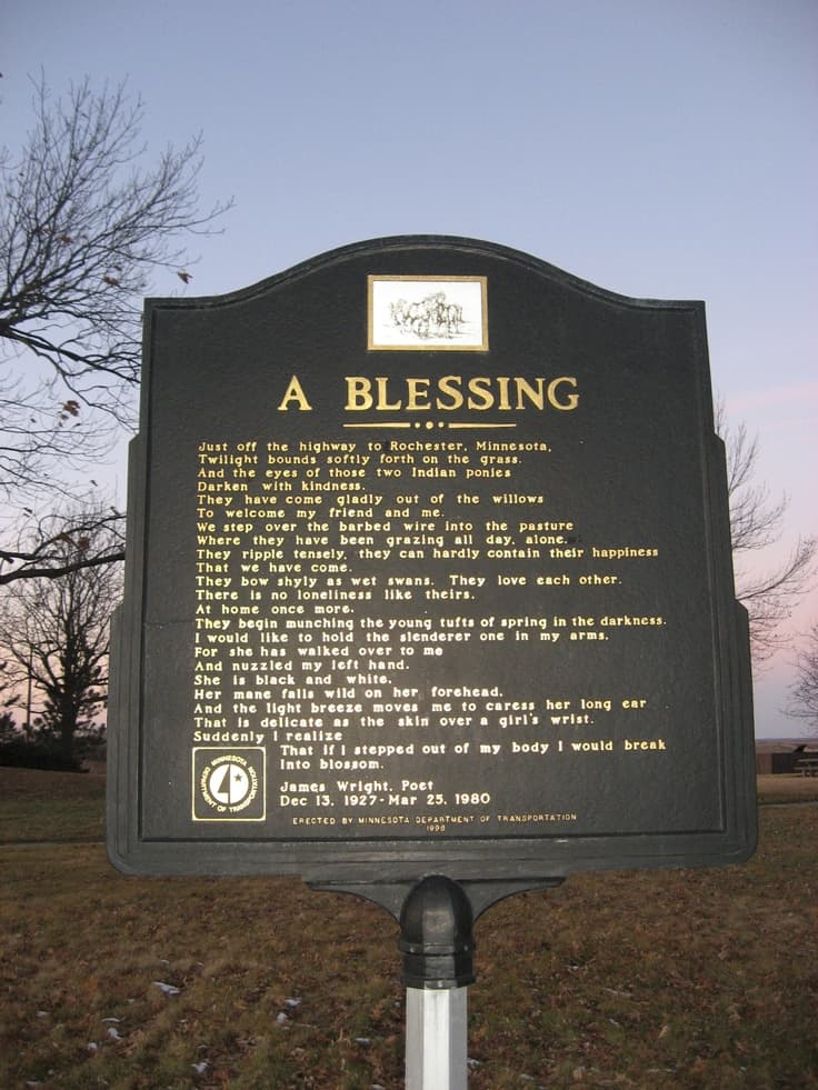 "a blessing james wright ""a blessing,"" which was first published in james wright's third poetry collection,  the branch will not break (1963), and again in his collected poems (1971),."