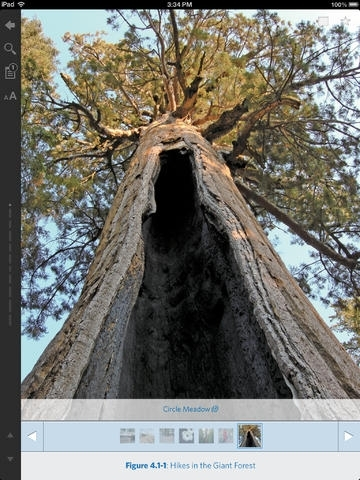 Hiking Sequoia and Kings Canyon National Parks - Official Interactive FalconGuide by Laurel Scheidt