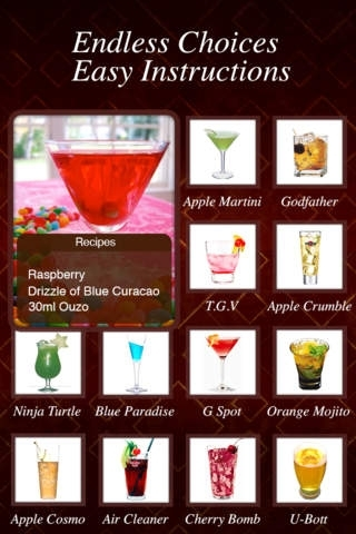 1001 Cocktail Recipes