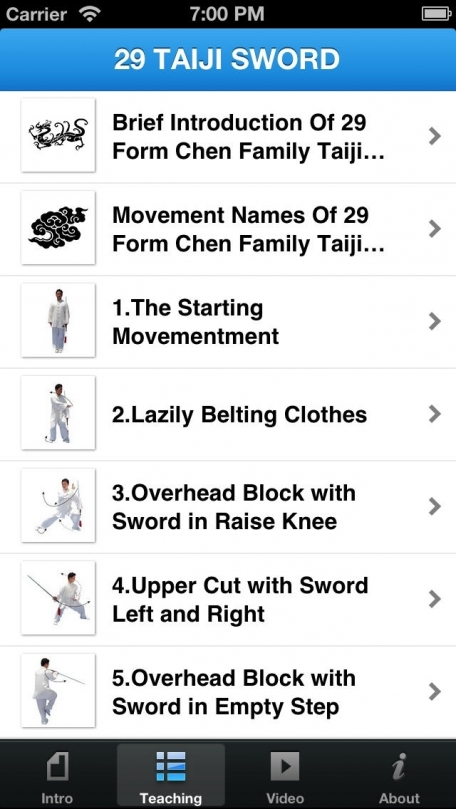 29 Taiji Sword - 29 Form Chen Family Taiji Sword