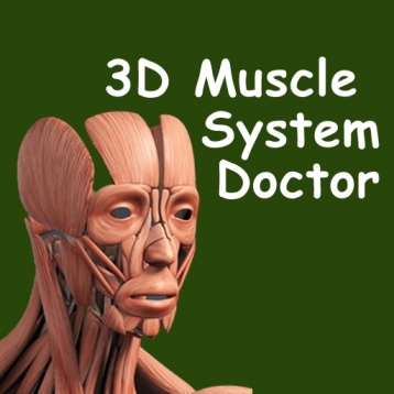 3D Muscle System Doctor