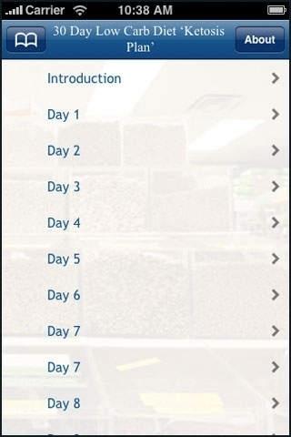 30 Day Low Carb Diet 'Ketosis Plan' .