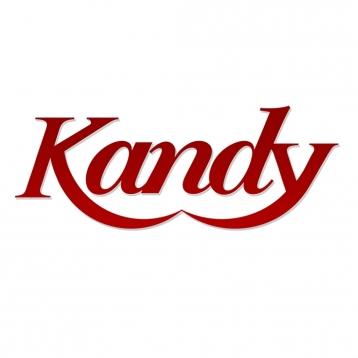 AAA+ America\'s Kandy Magazine