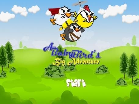 A Baby Bird's Big Adventure