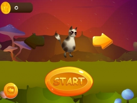 A Grumpy Cat Race - Kids Racing Game Free