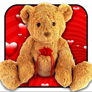 A Talking Bear - Happy Valentine\'s Day